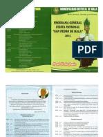 Programa San Pedro de Mala 2015