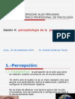 Sesion 4 Psicopatologia