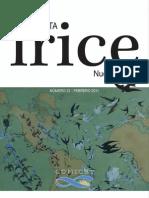 Revista IRICE