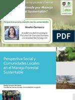 Análisis Social - Comunidades y plantaciones forestales. Noelia Carrasco
