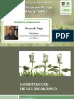Análisis Económico en el Manejo Forestal Sustentable - Fernando Raga - CORMA