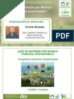 Análisis Ambiental, Biodiversidad en el MFS - Cristián Estades