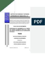 TESIS PACIENTE OSTOMIZADO.pdf