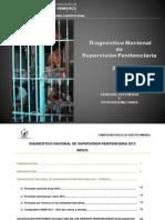 DNSP_2013