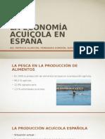 La Economía Acuícola en España