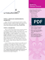 Pink Panther - Diabetes Management - Chapter 2