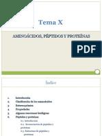 TEMA X Amino Acidos