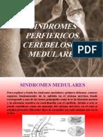 sindromesperfiericoscerebelosoymedulares