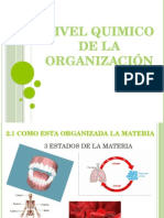 1.-NIVEL QUIMICO DE LA ORGANIZACIÓN (2).pptx