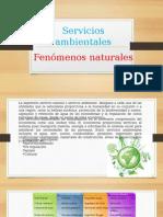 2.6 Servicios Ambientales Y 2.7 Fenomenos Naturales
