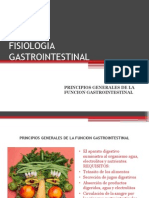 fisiologiagastrointestinal-131022171424-phpapp02