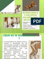 EXPOSICION BIOFISICA APLOMOS.pptx