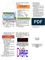 leafletdiare-140203174741-phpapp02.docx