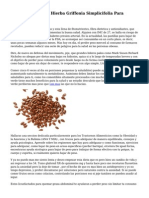 Propiedades De La Hierba Griffonia Simplicifolia Para Adelgazar