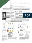 ResumenRelatividadEspecial.pdf