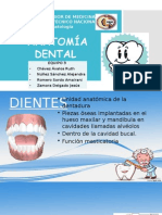 Eq 3 Anatomia Dental