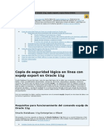 Copias de seguridad en Oracle 11g.pdf