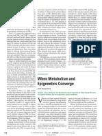 When Metabolism and Epigenetics Converge
