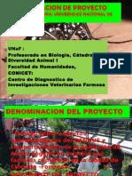 Proyecto de investigacion dengue