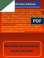 Acupuntura Manual 24