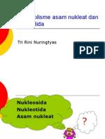 Metabolisme asam nukleat dan nukleotida.ppt