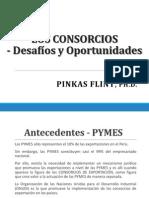 Los Consorcios Desafios y Oportunidades -Pinkas Flint