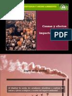 Sesion VIII - Causas y Efectos Del Impacto Ambiental 21770