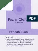 Referat Facial Cleft