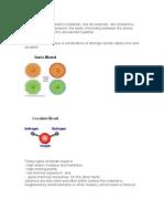 The Properties of Ceramic Materials