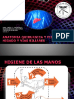 INES - Anatomia Higado y Vias Biliares