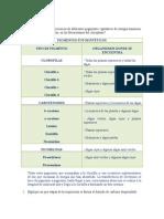 Cuestionario_Práctica_08