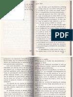 Palma Sola Book