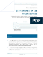 Resiliencia en Organizaciones