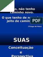 FHTMSS_SUAS_Conceituacao_e_perspectiva