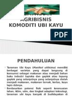 Kemitraan Agribisnis Komoditi Ubi Kayu