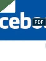 Líder en El Mercado de Publicidad de Facebook en Las Redes Sociales