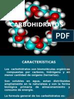 Carbohidratos Clase Upla