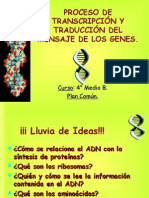 transcripcion_traduccion adn