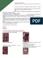 Tipologia Final 2