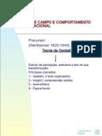 ateoriadecampoecomportamentoorganizacional-110724102656-phpapp02