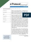 IPv6 document