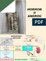 Curs 12- Androgeni Steroizi Anabolizanti