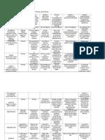 Desarrollo de Las Etapas Sensoriomotrices Jean Piaget (1)