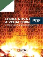 Agrocombustiveis_lLenha Nova Para a Velha Fornalha