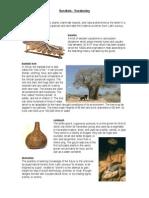 Sundiata - Vocabulary List