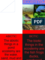 ecosystem book creator