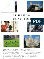 Legends of the Ravens at the Tower of London