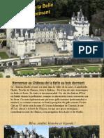210120603 Chateau de La Belle Au Bois Dormant Pptx