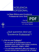 Professional Excellence (Español)