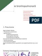 Patologia aparatului pulmonar